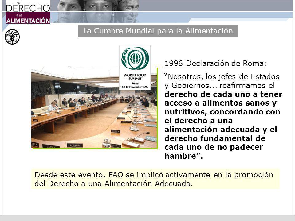 La Cumbre Mundial para la Alimentación 1996 Declaración de Roma: Nosotros, los jefes de Estados y Gobiernos... reafirmamos el derecho de cada uno a te