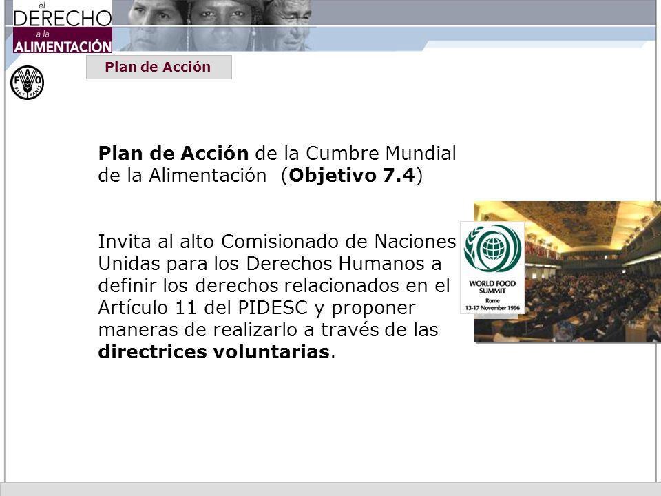 Plan de Acción Plan de Acción de la Cumbre Mundial de la Alimentación (Objetivo 7.4) Invita al alto Comisionado de Naciones Unidas para los Derechos H