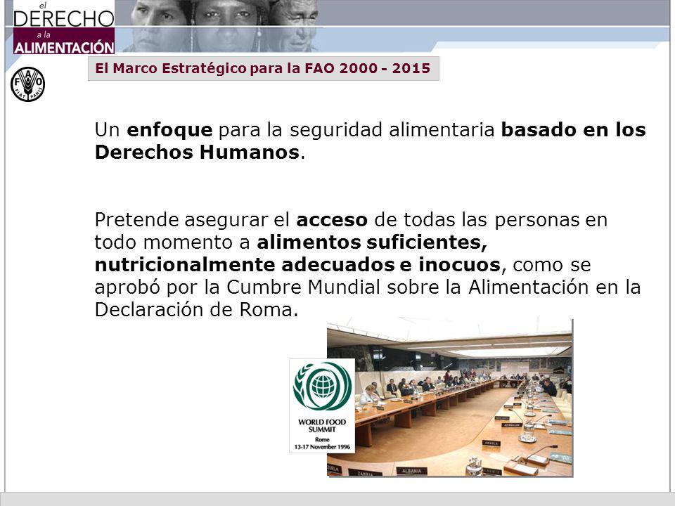 El Marco Estratégico para la FAO 2000 - 2015 Un enfoque para la seguridad alimentaria basado en los Derechos Humanos. Pretende asegurar el acceso de t