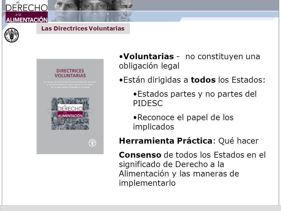 Voluntarias - no constituyen una obligación legal Están dirigidas a todos los Estados: Estados partes y no partes del PIDESC Reconoce el papel de los