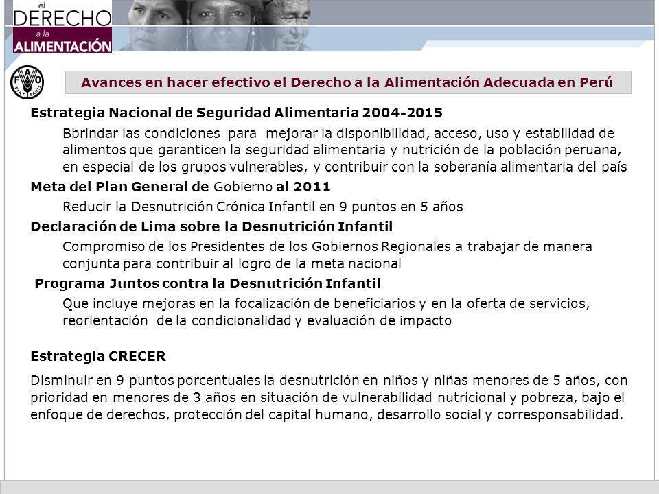 Avances en hacer efectivo el Derecho a la Alimentación Adecuada en Perú Estrategia Nacional de Seguridad Alimentaria 2004-2015 Bbrindar las condicione