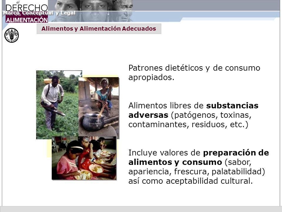 Patrones dietéticos y de consumo apropiados. Alimentos libres de substancias adversas (patógenos, toxinas, contaminantes, residuos, etc.) Incluye valo