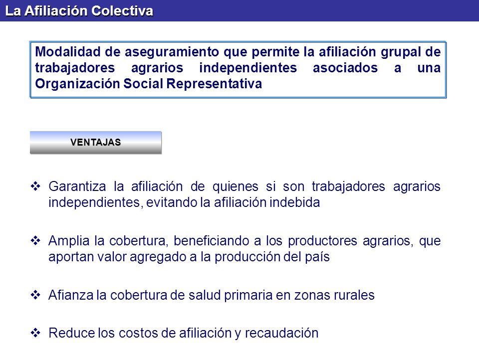 La Afiliación Colectiva Garantiza la afiliación de quienes si son trabajadores agrarios independientes, evitando la afiliación indebida Amplia la cobe