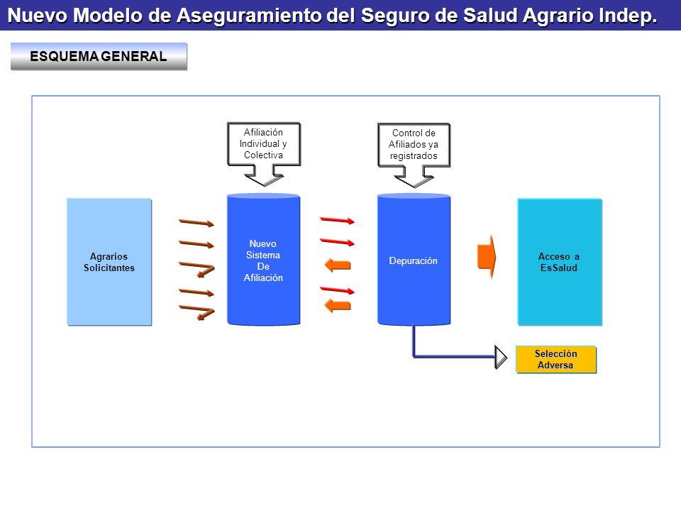 Nuevo Modelo de Aseguramiento del Seguro de Salud Agrario Indep. Nuevo Sistema De Afiliación Depuración Agrarios Solicitantes Acceso a EsSalud Afiliac