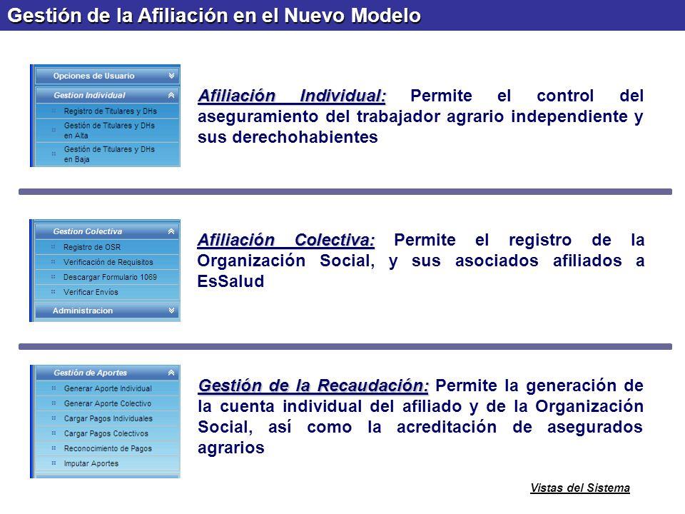 SSAI Sistema de Seguro Agrario Independiente Afiliación Individual: Afiliación Individual: Permite el control del aseguramiento del trabajador agrario