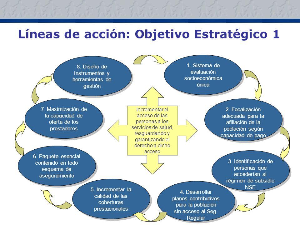 Líneas de acción: Objetivo Estratégico 1 8.Diseño de Instrumentos y herramientas de gestión 1.