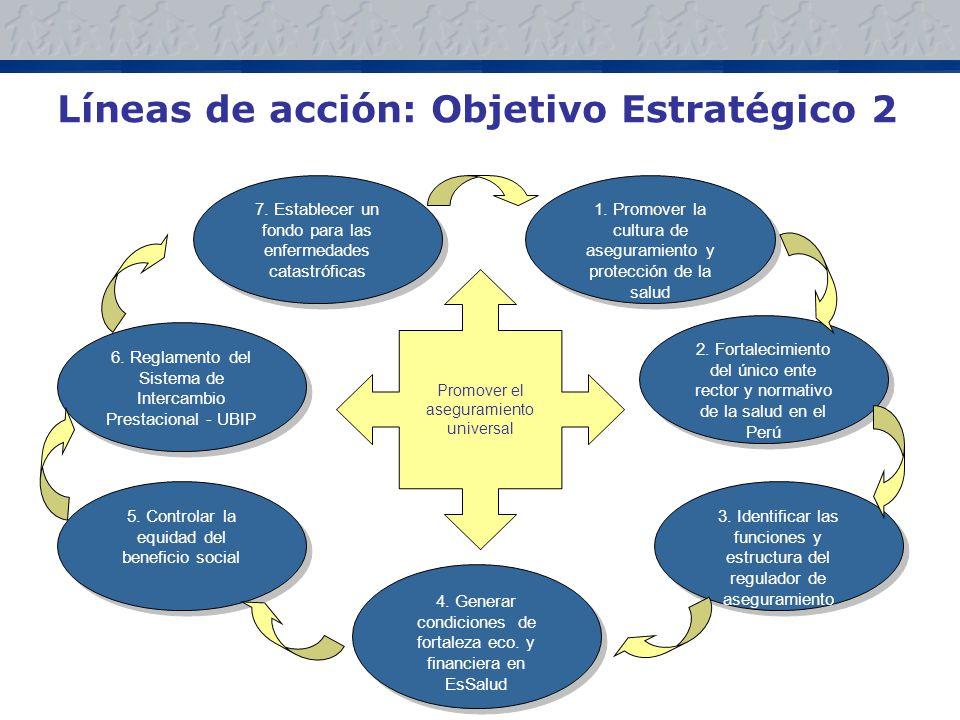 Líneas de acción: Objetivo Estratégico 2 7.