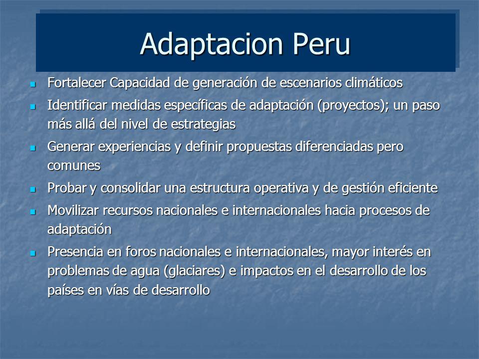 Adaptacion Peru Fortalecer Capacidad de generación de escenarios climáticos Fortalecer Capacidad de generación de escenarios climáticos Identificar me