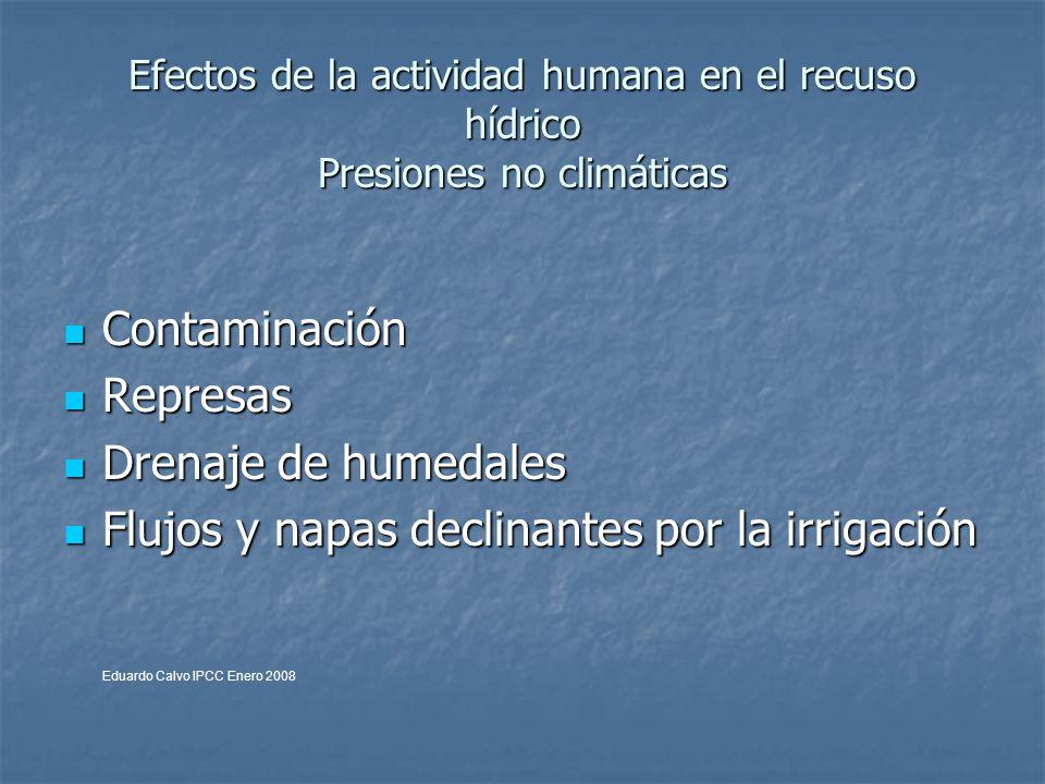Efectos de la actividad humana en el recuso hídrico Presiones no climáticas Contaminación Contaminación Represas Represas Drenaje de humedales Drenaje de humedales Flujos y napas declinantes por la irrigación Flujos y napas declinantes por la irrigación Eduardo Calvo IPCC Enero 2008
