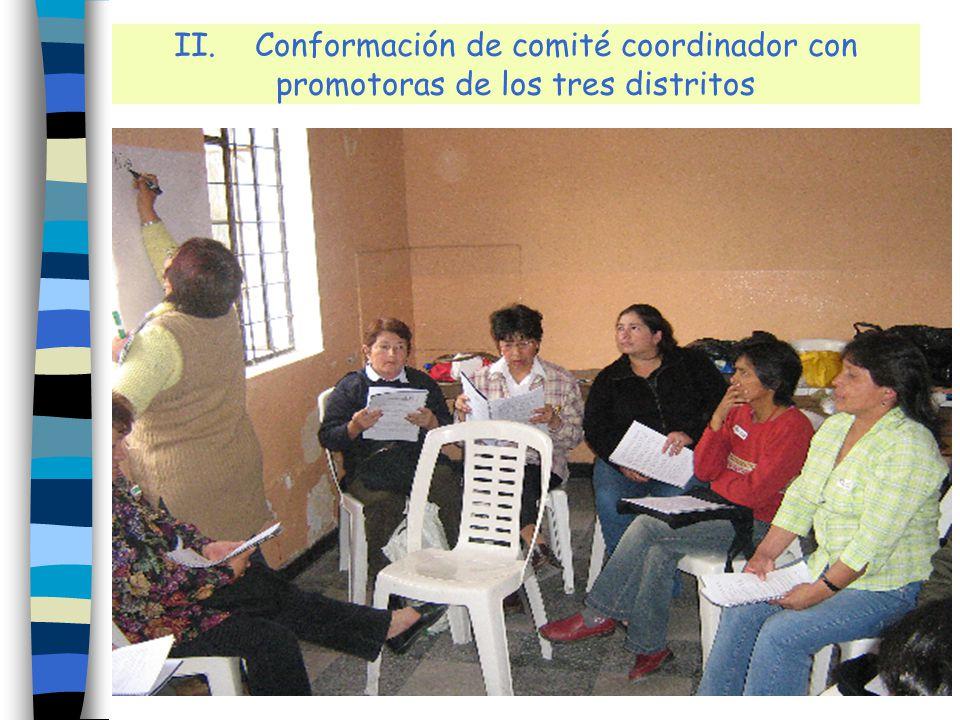II. Conformación de comité coordinador con promotoras de los tres distritos