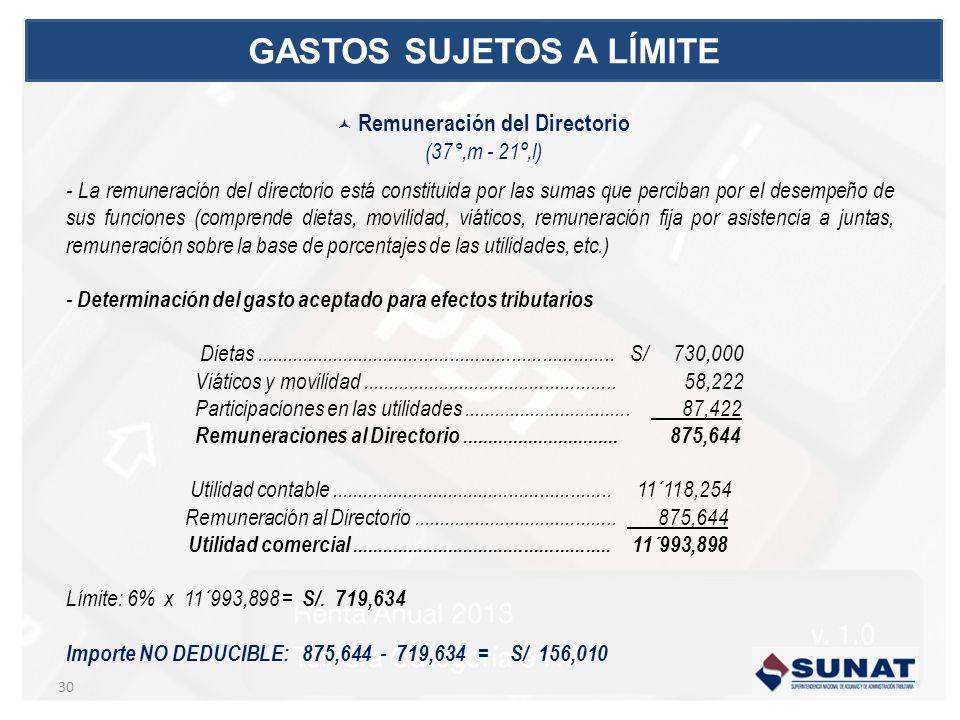 - La remuneración del directorio está constituida por las sumas que perciban por el desempeño de sus funciones (comprende dietas, movilidad, viáticos,