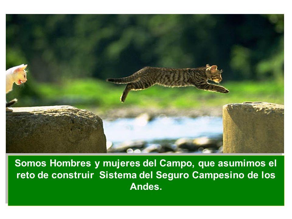 Somos Hombres y mujeres del Campo, que asumimos el reto de construir Sistema del Seguro Campesino de los Andes.