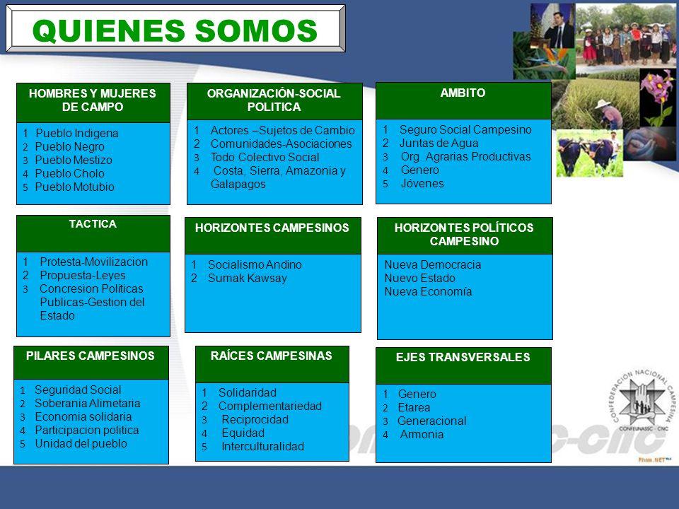 QUIENES SOMOS ORGANIZACIÓN-SOCIAL POLITICA 1Actores –Sujetos de Cambio 2Comunidades-Asociaciones 3 Todo Colectivo Social 4 Costa, Sierra, Amazonia y G