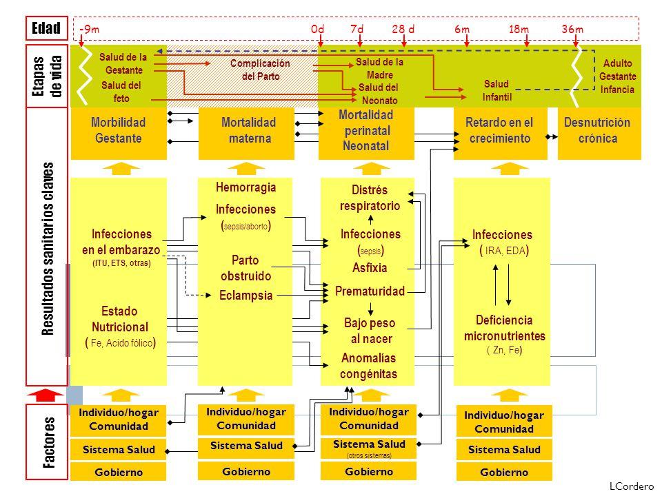 Sistema Salud Complicación del Parto Salud de la Gestante Salud del feto Salud del Neonato Salud de la Madre Salud Infantil Infecciones ( sepsis/aborto ) Eclampsia Hemorragia Prematuridad Asfixia Infecciones ( sepsis ) Distrés respiratorio Bajo peso al nacer Retardo en el crecimiento Desnutrición crónica Anomalías congénitas Mortalidad materna Mortalidad perinatal Neonatal Estado Nutricional ( Fe, Acido fólico ) Infecciones en el embarazo (ITU, ETS, otras) Infecciones ( IRA, EDA ) Deficiencia micronutrientes ( Zn, Fe ) Parto obstruido Morbilidad Gestante -9m0d7d28 d6m18m36m Individuo/hogar Comunidad Gobierno Individuo/hogar Comunidad Sistema Salud Gobierno Individuo/hogar Comunidad Sistema Salud (otros sistemas) Gobierno Individuo/hogar Comunidad Sistema Salud Gobierno Etapas de vida Edad Resultados sanitarios claves Factores Adulto Gestante Infancia LCordero