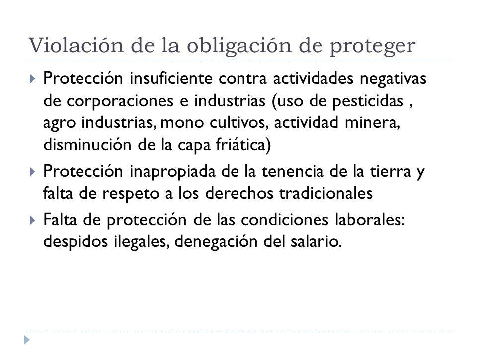 Violación de la obligación de proteger Protección insuficiente contra actividades negativas de corporaciones e industrias (uso de pesticidas, agro ind