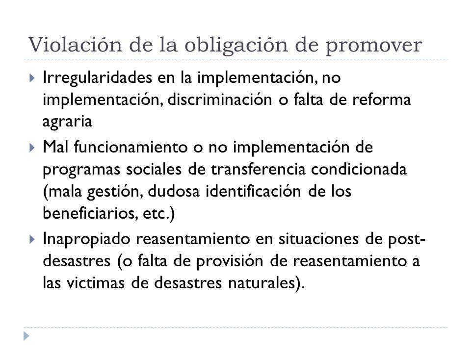 Violación de la obligación de promover Irregularidades en la implementación, no implementación, discriminación o falta de reforma agraria Mal funciona
