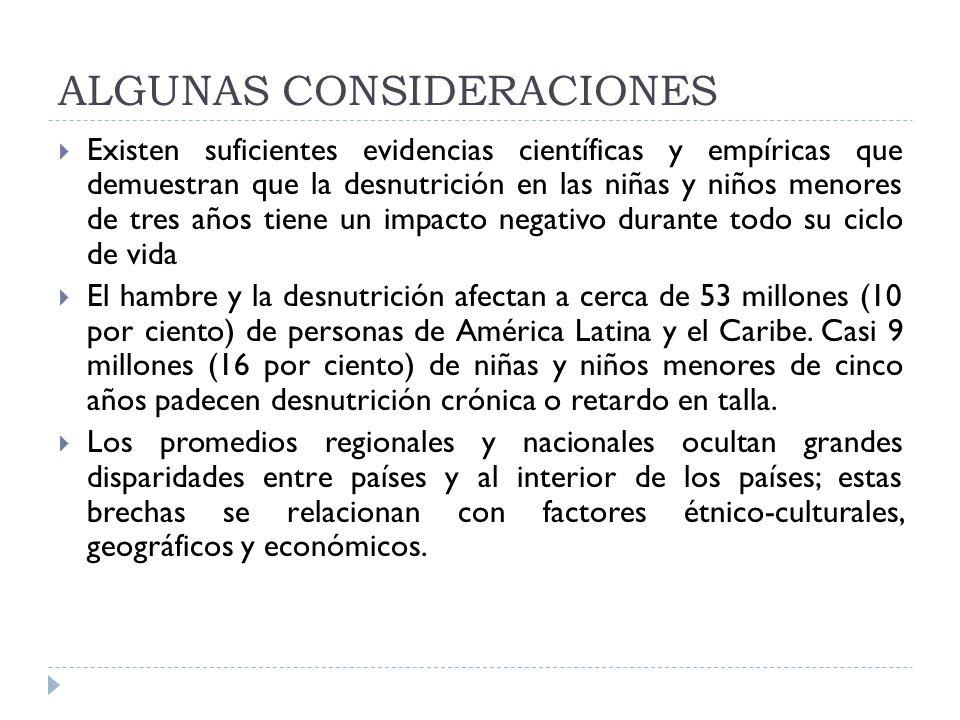 ALGUNAS CONSIDERACIONES Existen suficientes evidencias científicas y empíricas que demuestran que la desnutrición en las niñas y niños menores de tres años tiene un impacto negativo durante todo su ciclo de vida El hambre y la desnutrición afectan a cerca de 53 millones (10 por ciento) de personas de América Latina y el Caribe.