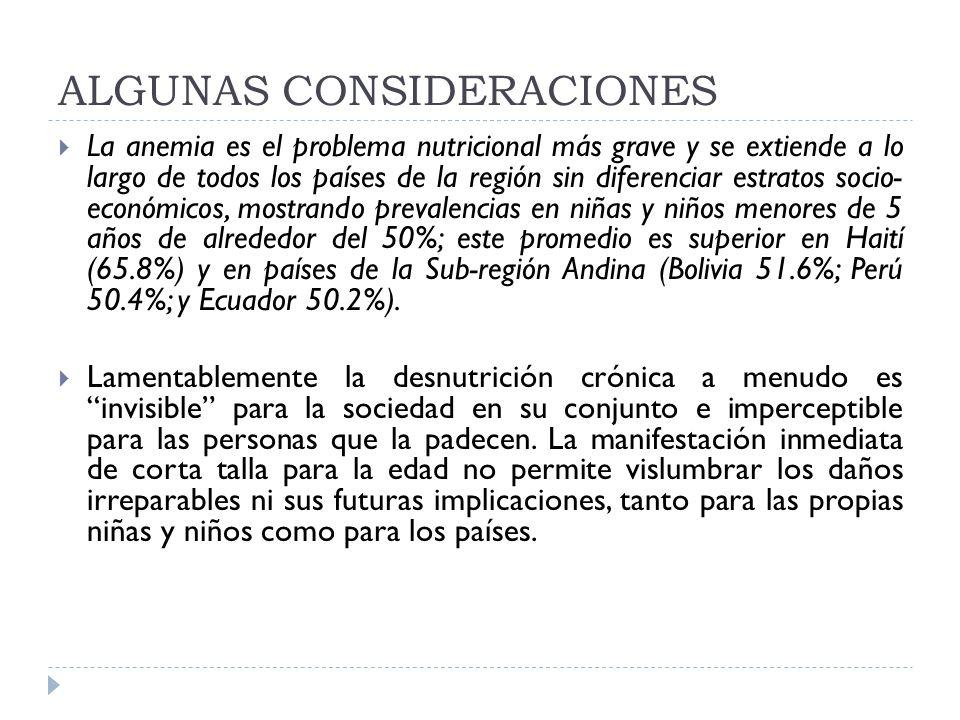ALGUNAS CONSIDERACIONES La anemia es el problema nutricional más grave y se extiende a lo largo de todos los países de la región sin diferenciar estra