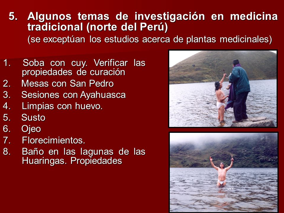 5.Algunos temas de investigación en medicina tradicional (norte del Perú) (se exceptúan los estudios acerca de plantas medicinales) 1. Soba con cuy. V