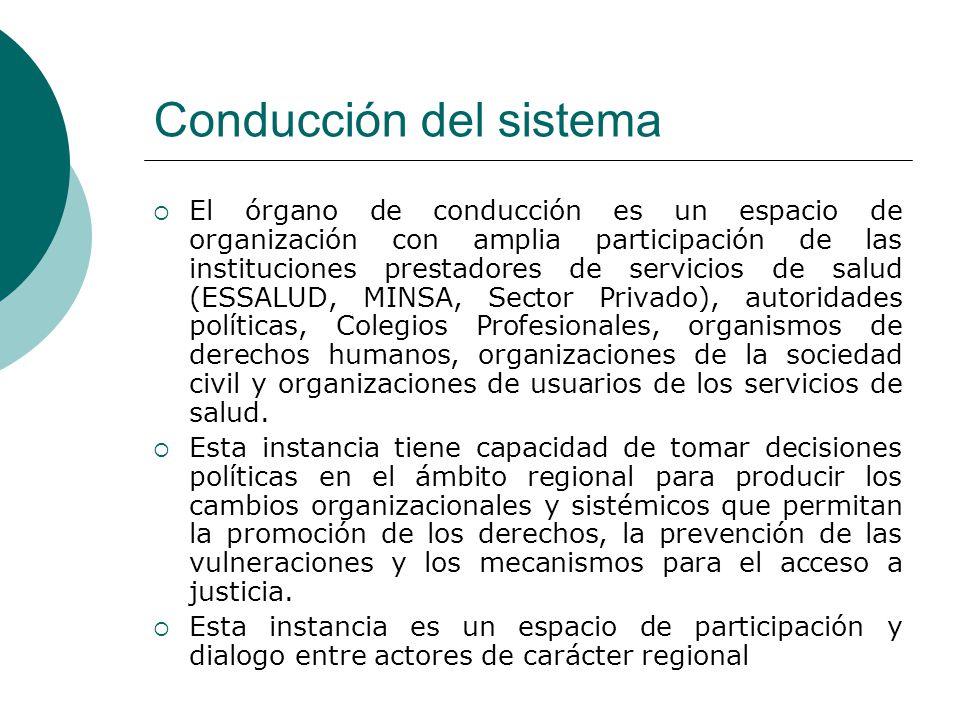 Conducción del sistema El órgano de conducción es un espacio de organización con amplia participación de las instituciones prestadores de servicios de