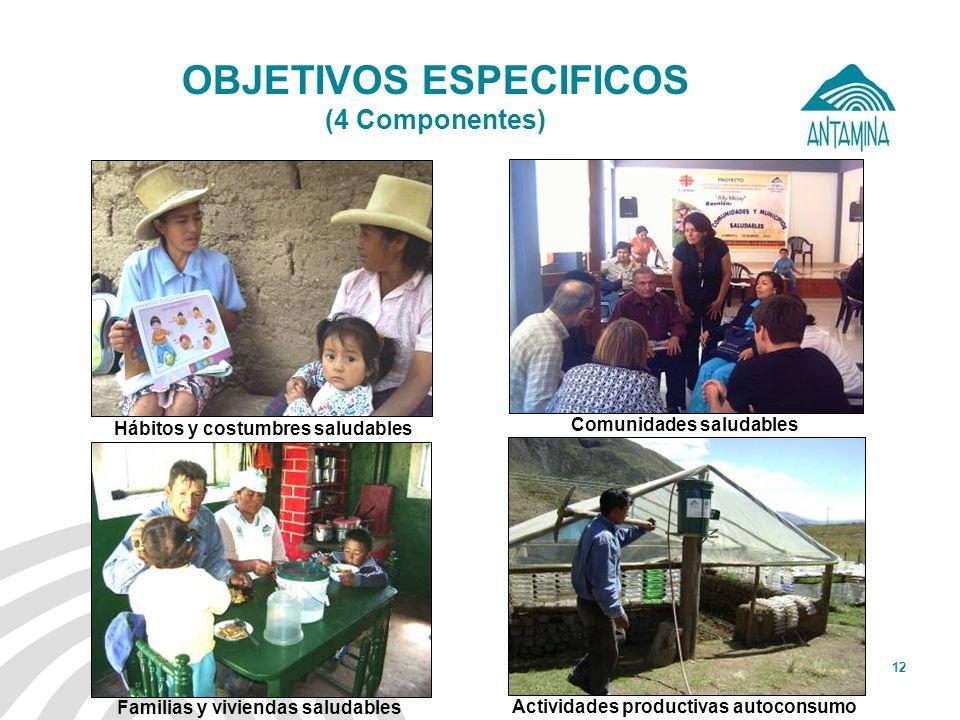 Antamina: Título de presentación12 OBJETIVOS ESPECIFICOS (4 Componentes) Hábitos y costumbres saludables Comunidades saludables Familias y viviendas s