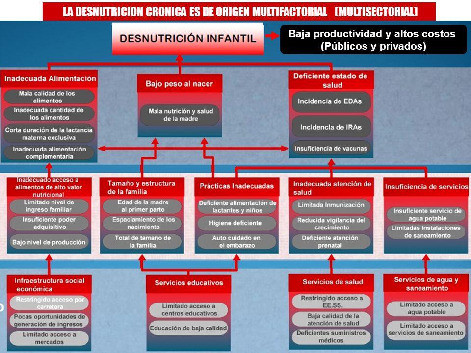 Antamina: Título de presentación3 LA DESNUTRICION CRONICA ES DE ORIGEN MULTIFACTORIAL (MULTISECTORIAL) Baja productividad y altos costos (Públicos y p