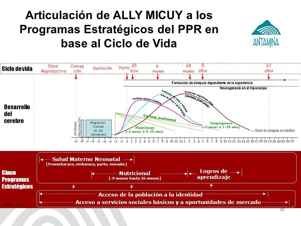 Antamina: Título de presentación33 Articulación de ALLY MICUY a los Programas Estratégicos del PPR en base al Ciclo de Vida Salud Materno Neonatal [Pr