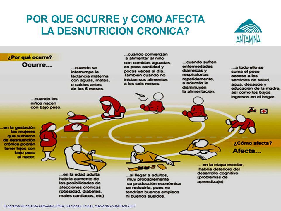 Antamina: Título de presentación4 Programa Mundial de Alimentos (PMA) Naciones Unidas, memoria Anual Perú 2007 POR QUE OCURRE y COMO AFECTA LA DESNUTR
