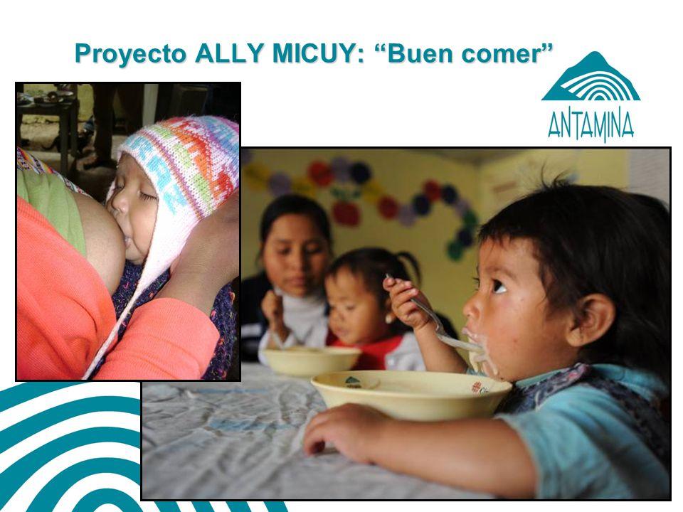 Antamina: Título de presentación28 Ally Micuy 2011: Implementación del 4to años de Ally Micuy y Oportunidades de mejora en el Proyecto 1.Alineamiento de la organización del Proyecto a la DIRES-Ancash : 1.Especialistas claves del Proyecto asignados a la DIRES: 2 2.Coordinadores Provinciales adscritos a las Redes de Salud: 7 (1-2xR).