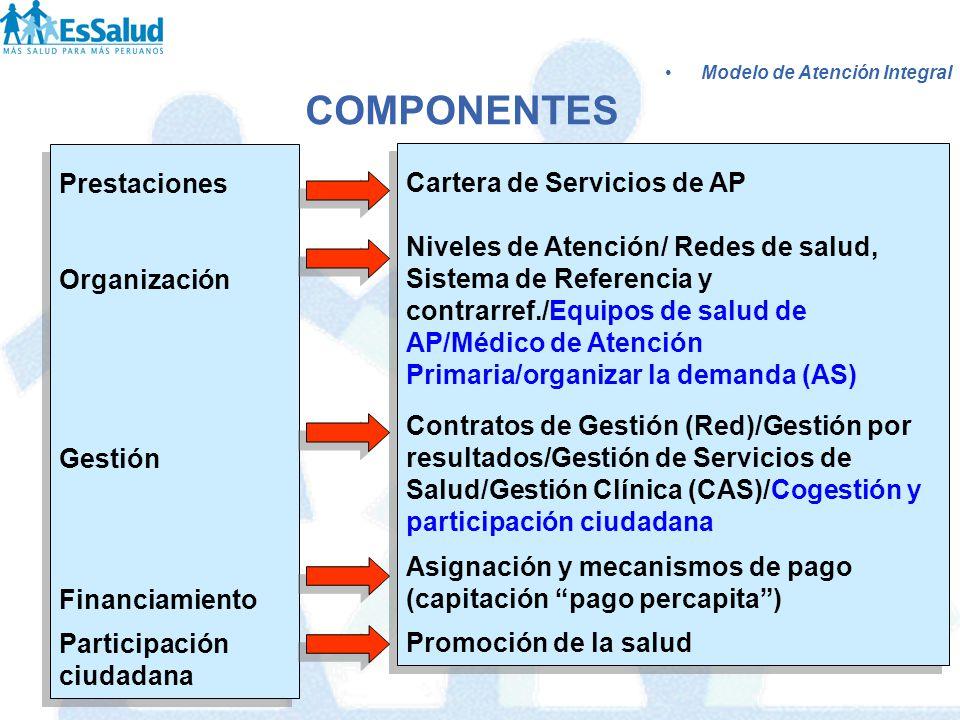 Prestaciones Organización Gestión Financiamiento Participación ciudadana Prestaciones Organización Gestión Financiamiento Participación ciudadana Cart