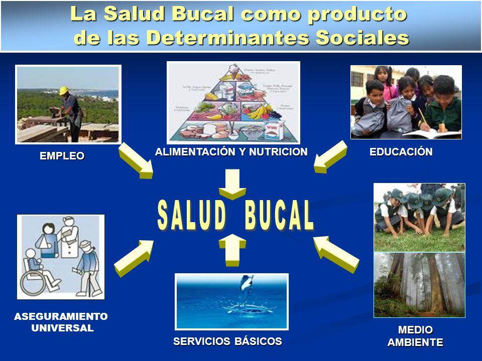 EDUCACIÓN ALIMENTACIÓN Y NUTRICION SERVICIOS BÁSICOS EMPLEO MEDIO AMBIENTE La Salud Bucal como producto de las Determinantes Sociales ASEGURAMIENTO UN