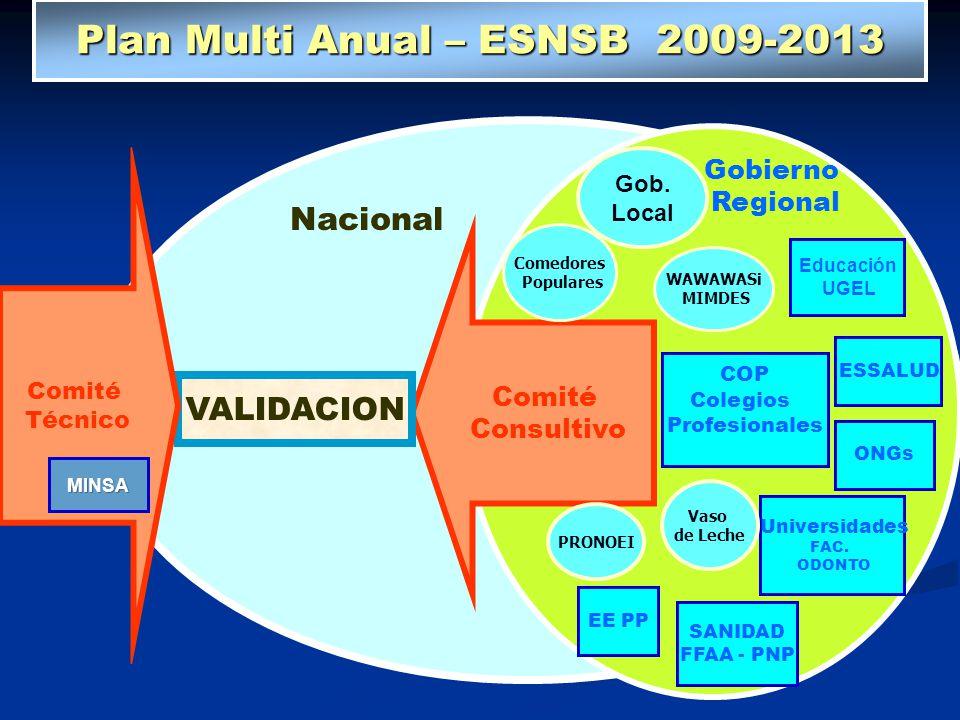 Plan Multi Anual – ESNSB 2009-2013 Ministerio Educación Gobierno Regional ESSALUD COP Colegios Profesionales ONGs EE PP Universidades FAC. ODONTO SANI