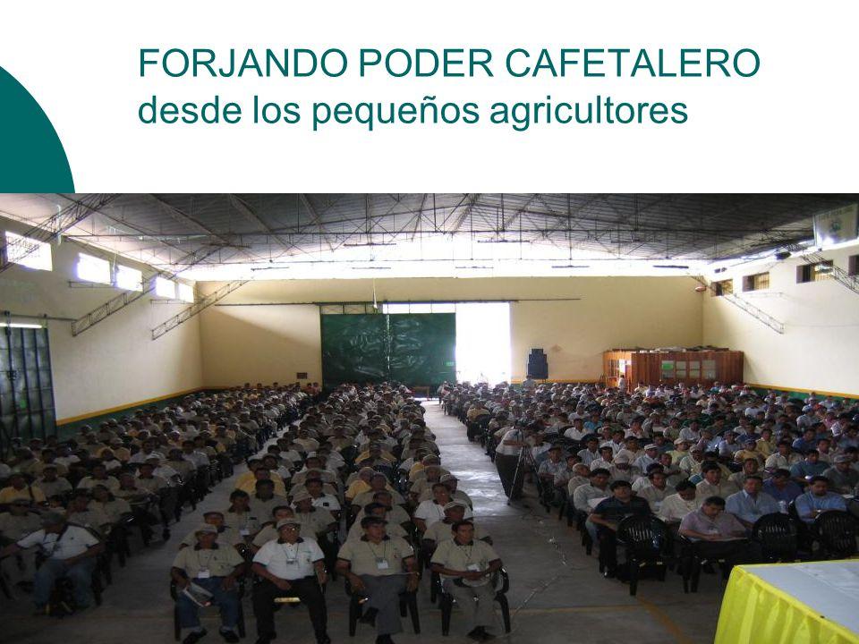FORJANDO PODER CAFETALERO desde los pequeños agricultores