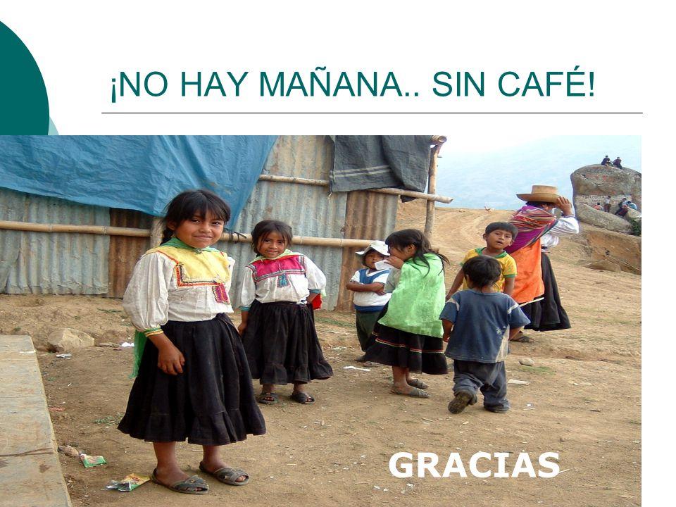 ¡NO HAY MAÑANA.. SIN CAFÉ! GRACIAS