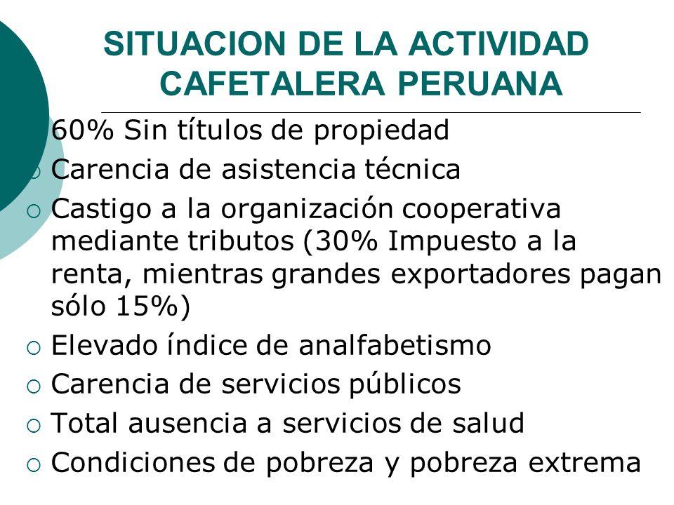 SITUACION DE LA ACTIVIDAD CAFETALERA PERUANA 60% Sin títulos de propiedad Carencia de asistencia técnica Castigo a la organización cooperativa mediant