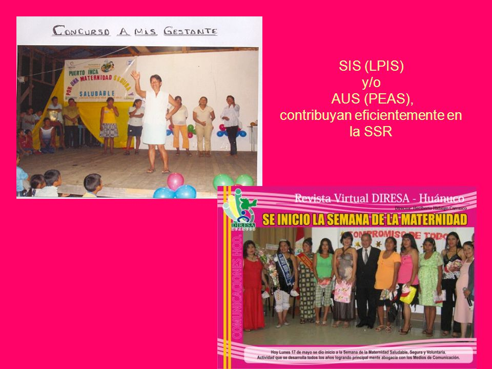 SIS (LPIS) y/o AUS (PEAS), contribuyan eficientemente en la SSR