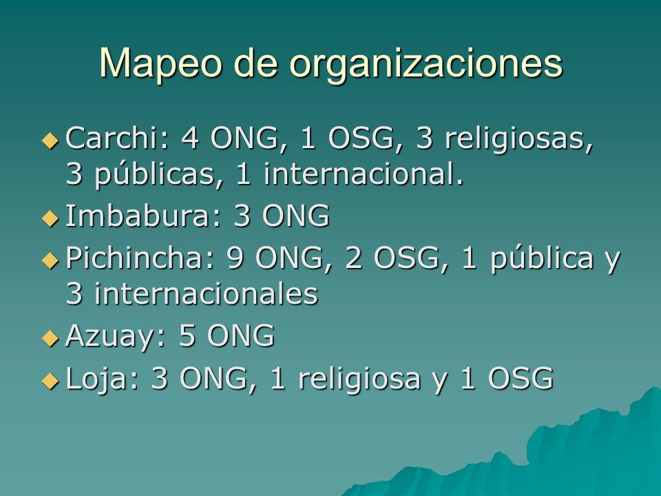 Mapeo de organizaciones Carchi: 4 ONG, 1 OSG, 3 religiosas, 3 públicas, 1 internacional. Carchi: 4 ONG, 1 OSG, 3 religiosas, 3 públicas, 1 internacion