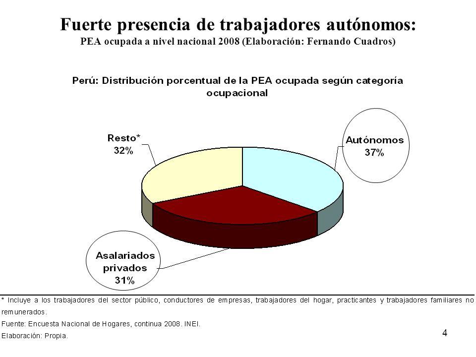 4 Fuerte presencia de trabajadores autónomos: PEA ocupada a nivel nacional 2008 (Elaboración: Fernando Cuadros)