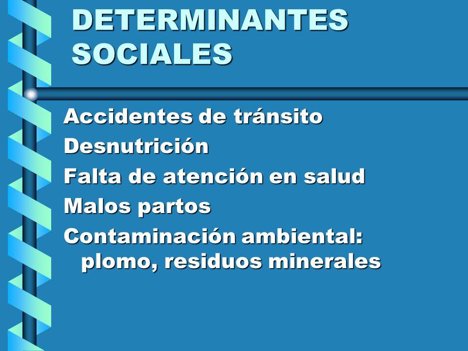 DETERMINANTES SOCIALES Accidentes de tránsito Desnutrición Falta de atención en salud Malos partos Contaminación ambiental: plomo, residuos minerales