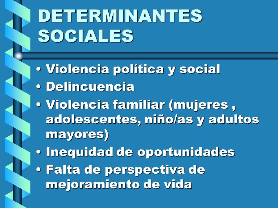 Las mujeres con discapacidad requieren de una atención especial Fuente: Censo Nacional 1993 Promedio Nacional Ayacucho Puno Huancavelica Junín