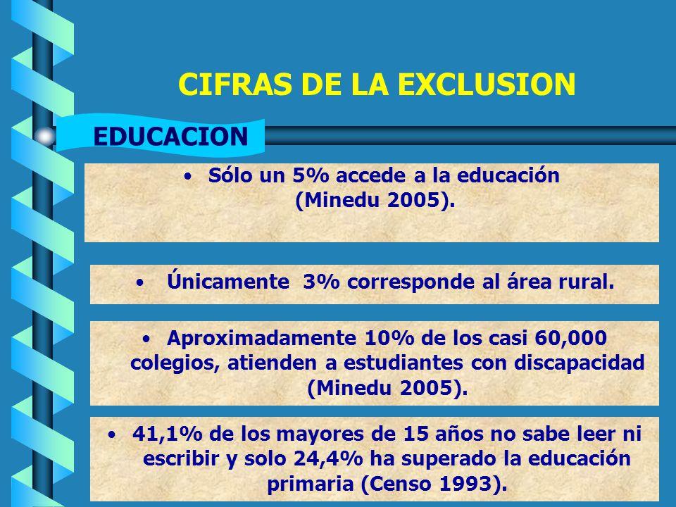 CIFRAS DE LA EXCLUSION Sólo un 5% accede a la educación (Minedu 2005).
