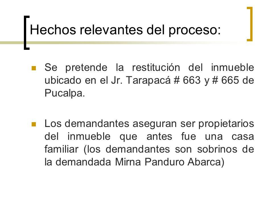 institucion instancia proceso civil: