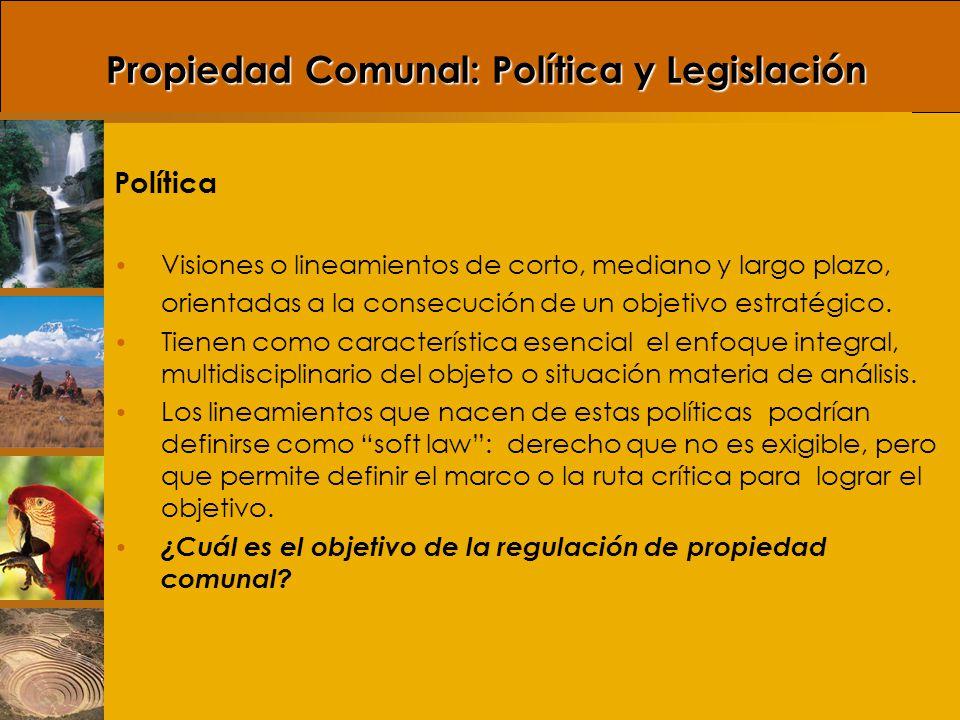 Legislación (instrumentos de política o normas legales) Instrumento de política: mecanismo a partir del cual se busca implementar u operativizar las políticas que nacen de un objetivo específico.