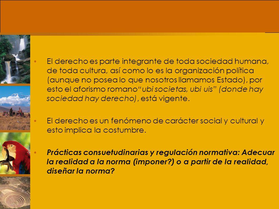 Política, Normas y Derecho Siguiendo a Raúl Brañes, el término eficacia se utiliza para designar el grado de aplicación de la norma jurídica y el término eficiencia para designar su grado de idoneidad.