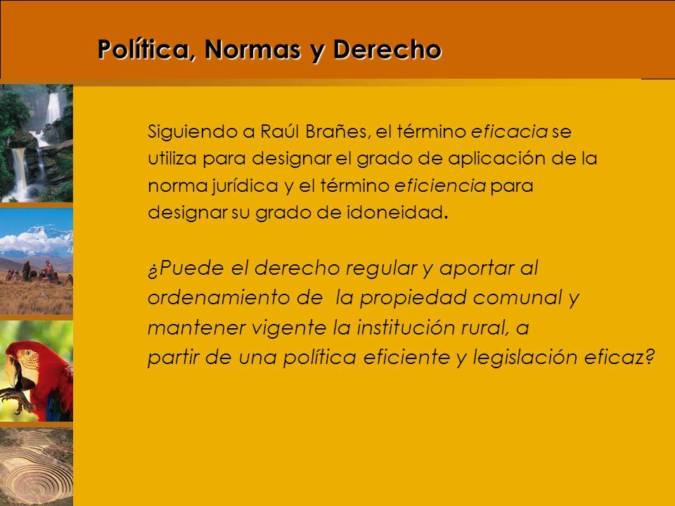 Decreto Legislativo Nº 1015 Artículo 10.- Las Comunidades Campesinas y las Comunidades Nativas deberán regularizar su organización comunal de acuerdo con los preceptos Constitucionales y la presente Ley.