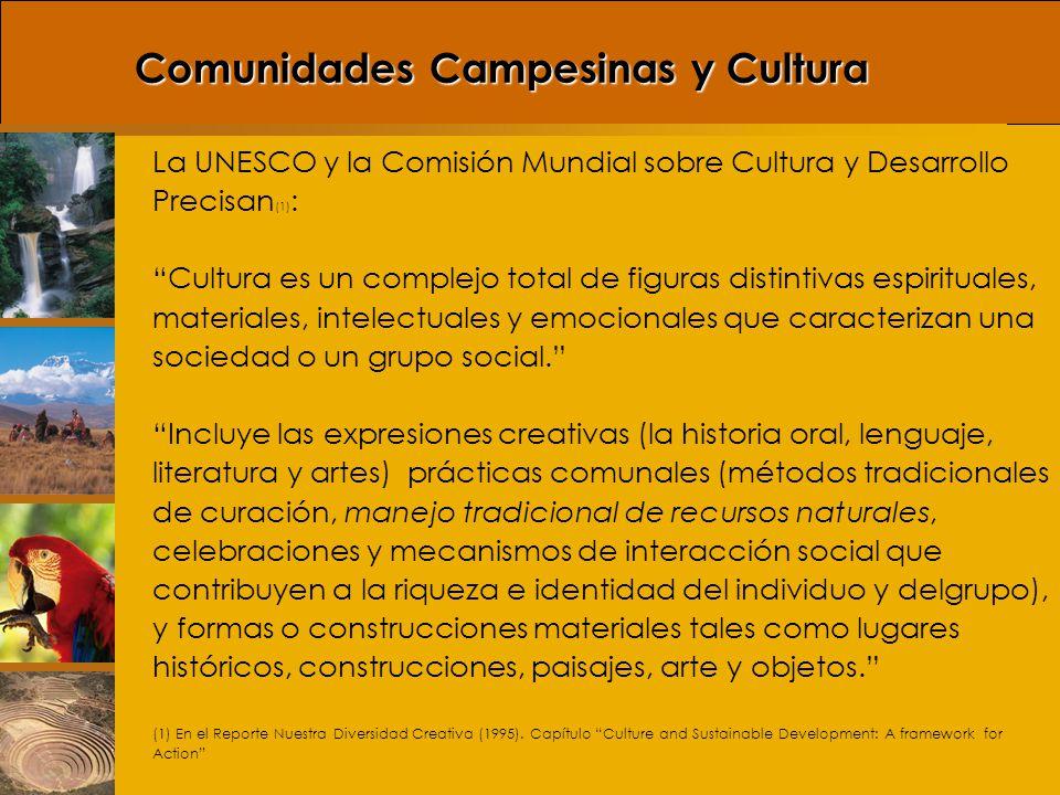 Perspectiva Ecológica de la Cultura Bajo este enfoque la cultura es un medio de adaptación al ambiente, las prácticas culturales de la gente están necesariamente vinculadas a las presiones y oportunidades del entorno donde viven.