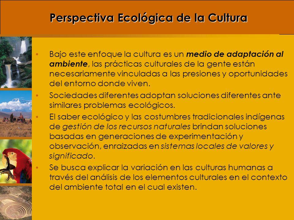 La cultura es un método de adaptación por el comportamiento y es potencialmente sensible a las influencias del medio ambiente y capaz de una rápida alteración.