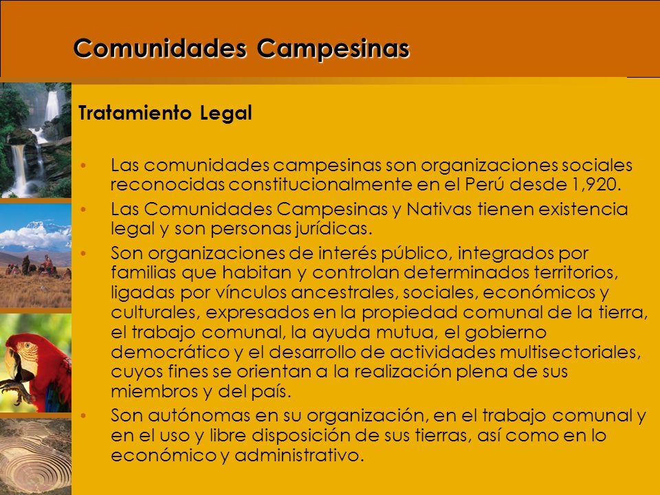 El Estado garantiza el derecho de propiedad sobre la tierra, en forma privada o comunal o en cualquiera otra forma asociativa.