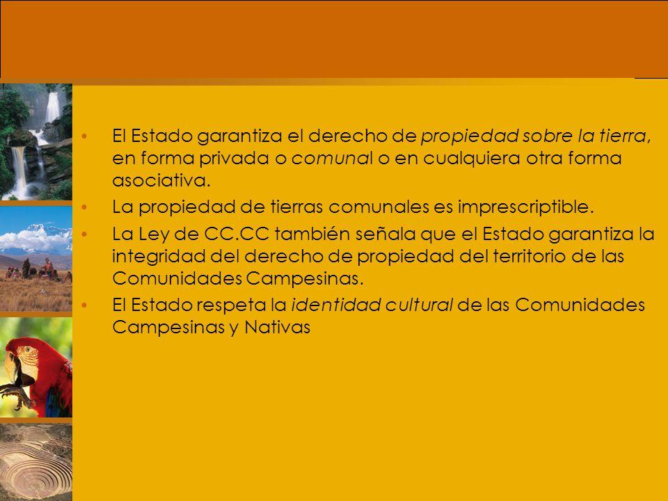 Tierras y Territorios Comunales El territorio comunal está integrado por las tierras originarias de la Comunidad, las tierras adquiridas de acuerdo al derecho común y agrario y las adjudicadas con fines de Reforma.