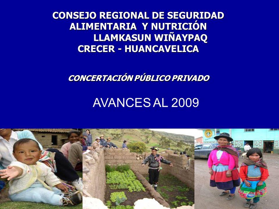 CONCERTACIÓN PÚBLICO PRIVADO CONSEJO REGIONAL DE SEGURIDAD ALIMENTARIA Y NUTRICIÓN LLAMKASUN WIÑAYPAQ LLAMKASUN WIÑAYPAQ CRECER - HUANCAVELICA AVANCES AL 2009